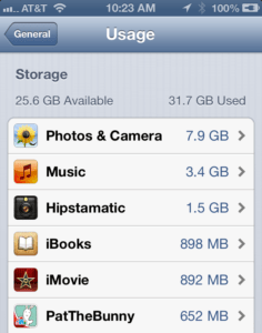 iPhone Storage Usage