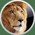 lion-120